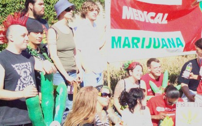 Arriva nelle farmacie la cannabis terapeutica made in Italy