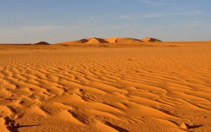 Politica = Deserto