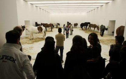 Jannis Kounellis e Andrea Cereda, le installazioni ieri e oggi